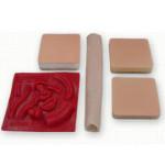 Набір тканин для навчання Student Tissue Pack BTP-10