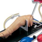 Модель ноги немовляти для внутрішньокісткових інфузій та ін'єкцій S409